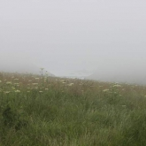 Blackpool-mill-in-the-mist