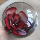 Red-rose-marble